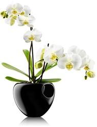 Eva Solo orchideeenpot , zwart