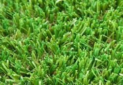 GardenGrass deseo 4 m, op=op - per m^2