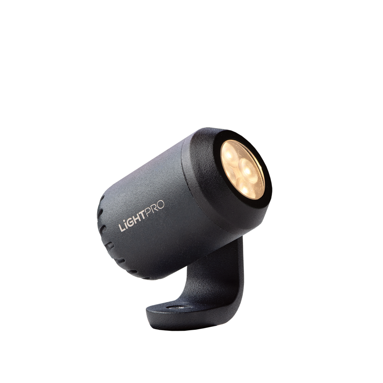 LightPro tuinspot Juno 2