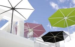 Royal Botania parasol Palma